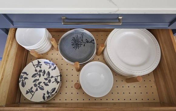 Drawer plate organizer with pegs